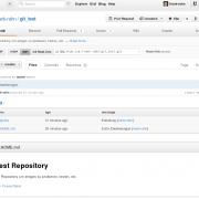 Das aktualisierte Repository bei GitHub