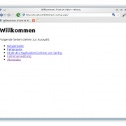 Die Startseite der Webanwendung mit Abmeldung