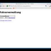Webseite des Services der Fahrerverwaltung